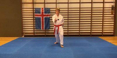 Bjarki Kjartansson mót 2020 vefur