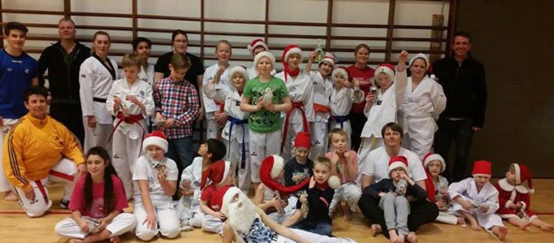 Jólaæfing í Taekwondo 2014 vefur